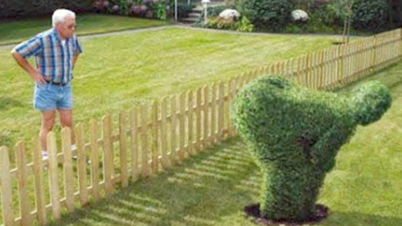 15 People Who Got Revenge on Their Neighbors