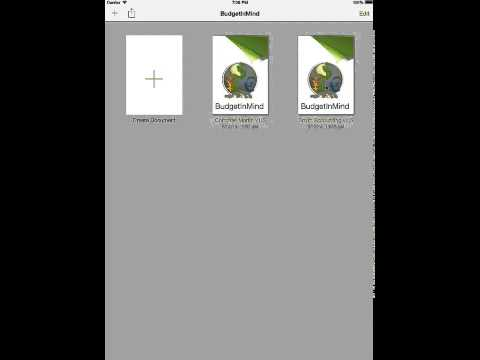 BudgetInMind for iPad: File Manager