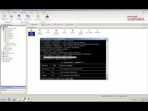 Info - Simpana 10 - Clearing simpana lock file on Unix to allow simpana service startup