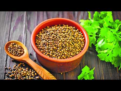 Lower The High Cholesterol With Coriander Seeds -  Reduce High Cholesterol