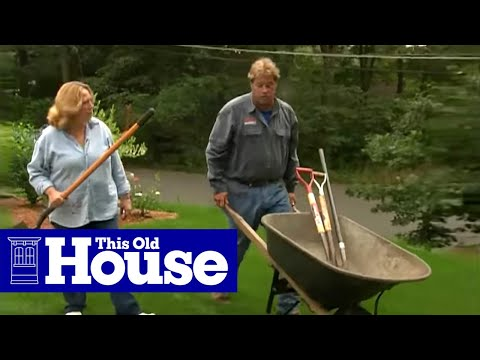 How to Patch a Lawn - This Old House