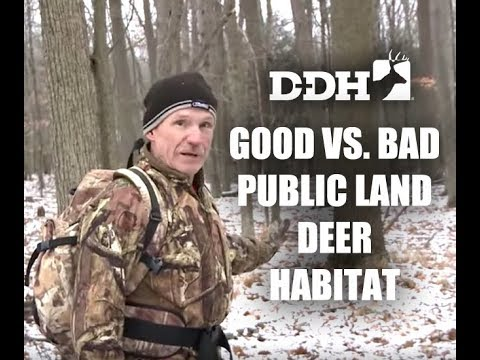Good vs. Bad Public Land Deer Habitat | John Eberhart @deerhuntingmag