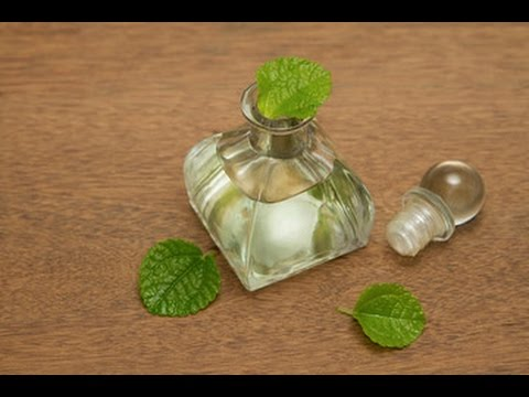 How to Make Peppermint Infused Oil: Easy DIY for Hair, Scalp & More!