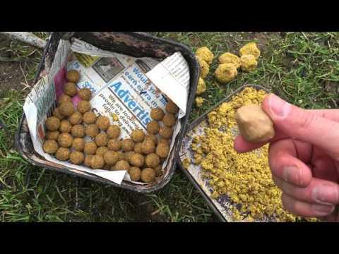 Chub Bait - Cheese Past - Boilies