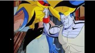 Wolverine vs Colossus