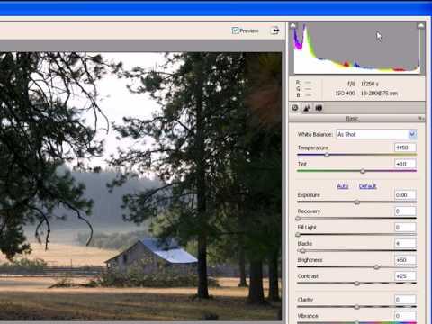 How to use Adobe Camera Raw