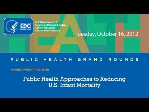 Public Health Approaches to Reducing U.S. Infant Mortality