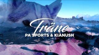 PA Sports & Kianush - Träne 4K (prod. by Zinobeatz & Jermaine P.)