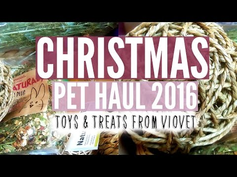 CHRISTMAS PET HAUL 2016: VIOVET & MORE! | RosieBunneh