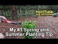 My #1 Spring and Summer Landscape Planting Tip