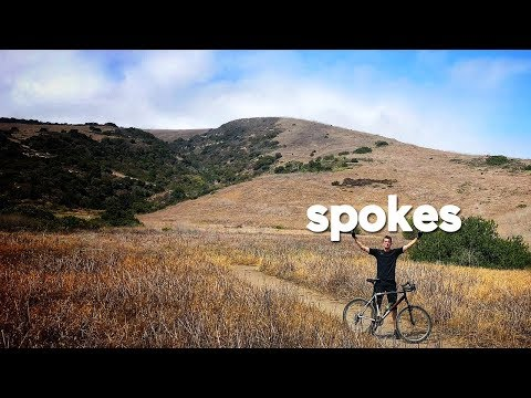spokes :: bommer canyon