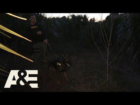 Live PD: Trust Your Dog (Season 2) | A&E