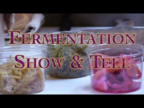 Fermentation Show & Tell