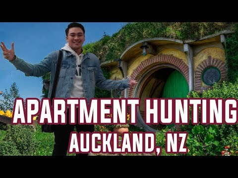 Apartment Hunting in New Zealand - IT WASN'T EASY!
