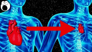 Top 10 Strangest Things That Happen To Your Body In Space