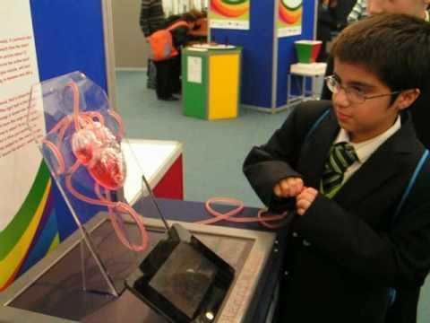 Science Week (Heart Model)