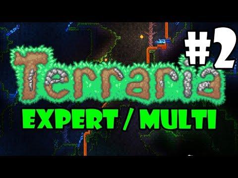 Expert / Multi - Terraria Full Playthrough - Part 2 - JUNGLE / DUNGEON