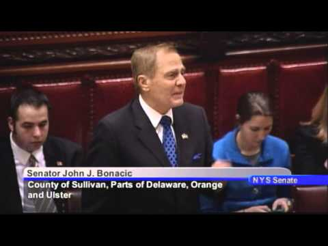New York State Senate Session - 06/20/14