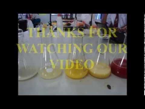 Chemistry Project (Vitamin C in Fruit Juices) STPM