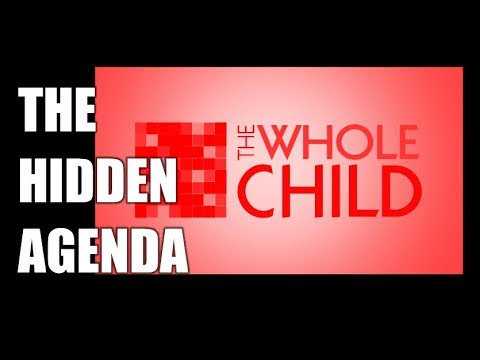 The Whole Child Initiative, the Hidden Agenda Behind the Student Code of Conduct