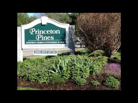Princeton Pines | Apartments Portland ME