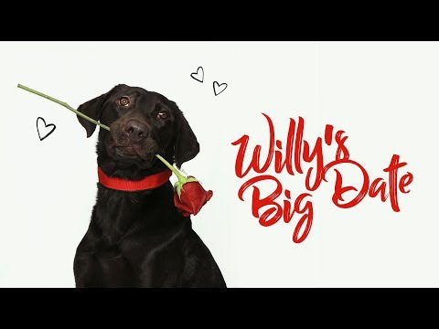 Willy's Big Date
