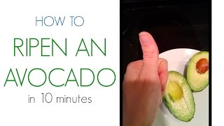 Lifehack How To Ripen An Avocado In 10 Minutes