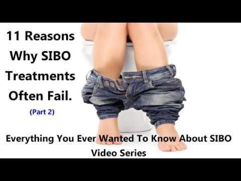 Reasons SIBO Treatments Often Fail- Part II