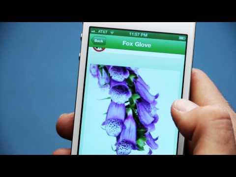 Wild Edibles App Commercial
