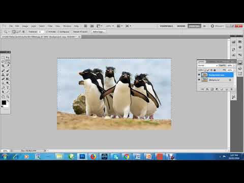 How to make PNG file for your ppt or website -transparent background