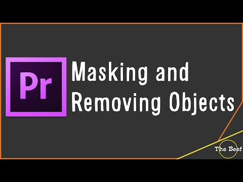 Premiere Tutorial: Masking and Removing Objects