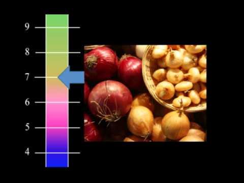 Back to the Homestead - Basics of soil pH & Fertilizer
