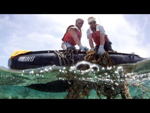 Ocean plastic-dump has more plastic than thought