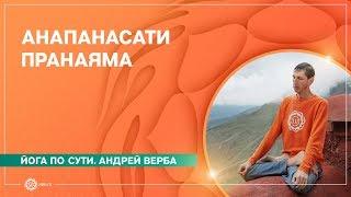 Download Анапанасати пранаяма. Медитация для начинающих Video