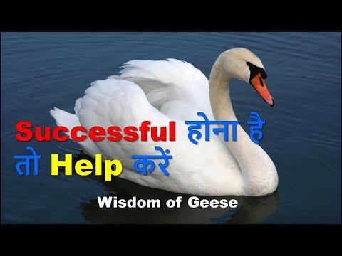 Successful होना है तो Help करें | Wisdom of Geese|Motivational video in hindi