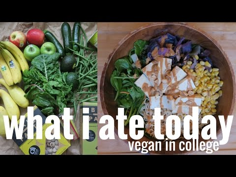 WHAT I ATE TODAY // MY LAZY GROCERY HAUL // VEGAN