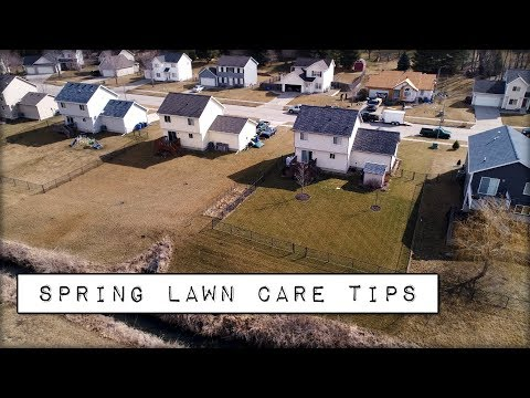 Spring Lawn Care Tips - The FIRST Thing To Complete In Your Lawn for 2018