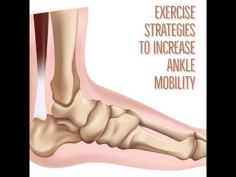 Exercise Strategies To Increase Ankle Dorsiflexion