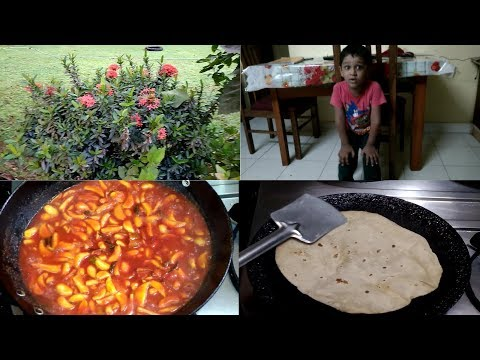 Kerala Woman Daily Routine And Dinner Vlog / No - 9