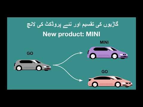 MINI Fsd Launch