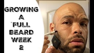 How to grow a Full and Thicker Beard (week 2) The Cut Buddy