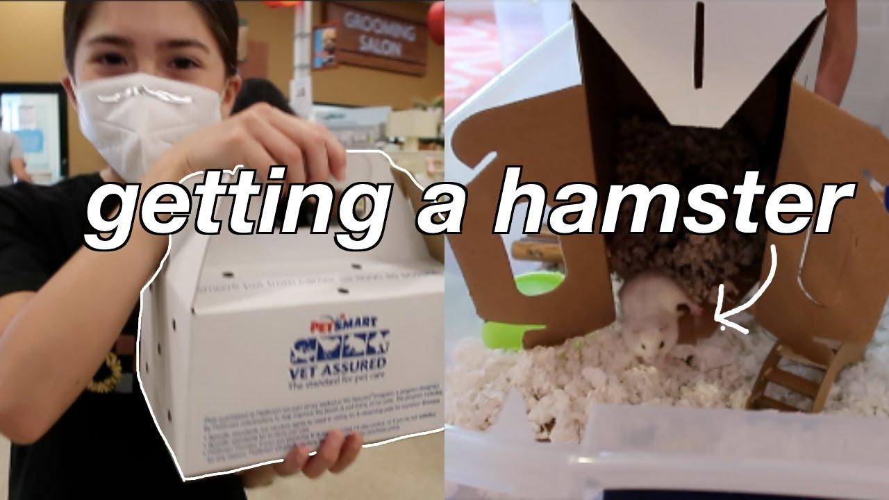 GETTING MY HAMSTER!! + hamster supplies haul | Oli Nicole