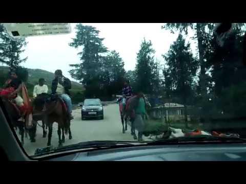 कार के द्वारा शिमला से कुफरी यात्रा | Shimla to Kufri Journey by Car