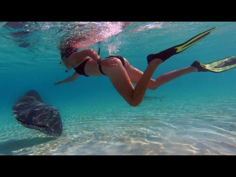 16. Dancing with Stingrays in Moorea, Sailing French Polynesia @The Life Nomadik