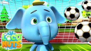 Funny Cartoon | Kids Videos | Comedy Cartoons | Funny Videos | Animation | Loco Nuts