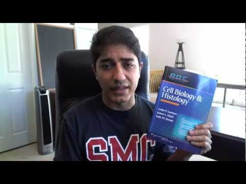 How to Study Histology in Medical School