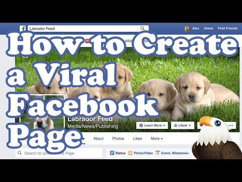 How to create a VIRAL FACEBOOK page & get LIKES!
