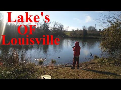 Lake's OF Louisville Best Fishing Lake's In Louisville Kentucky | Fisherman's Park