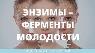 Ольга Левонюк. Энзимы – ферменты молодости