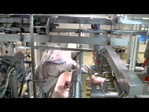 Scott - Automated Lamb Boning System 2011